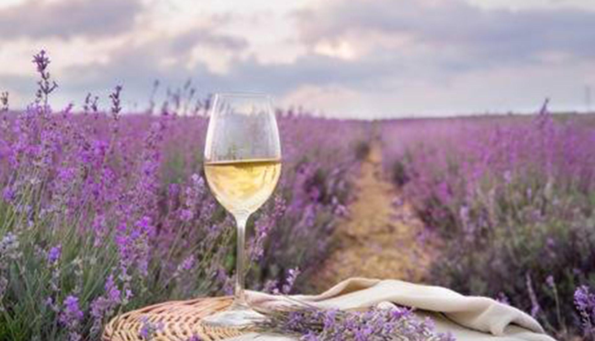 Vino rosé della Cave de Bonnieux